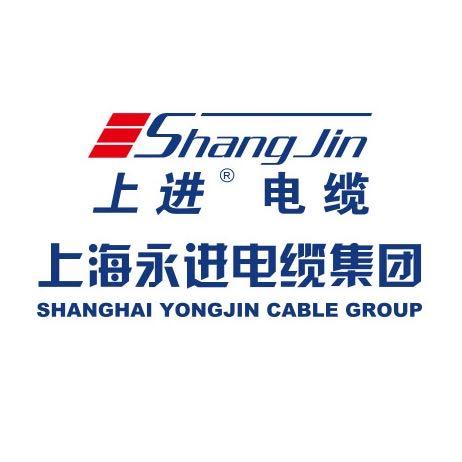 上海永进电缆(集团)有限公司